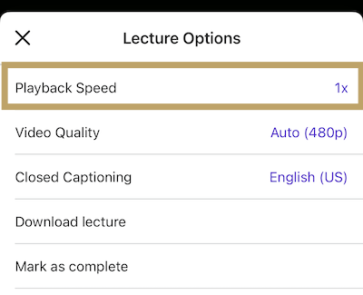 playback_speed_ios.png